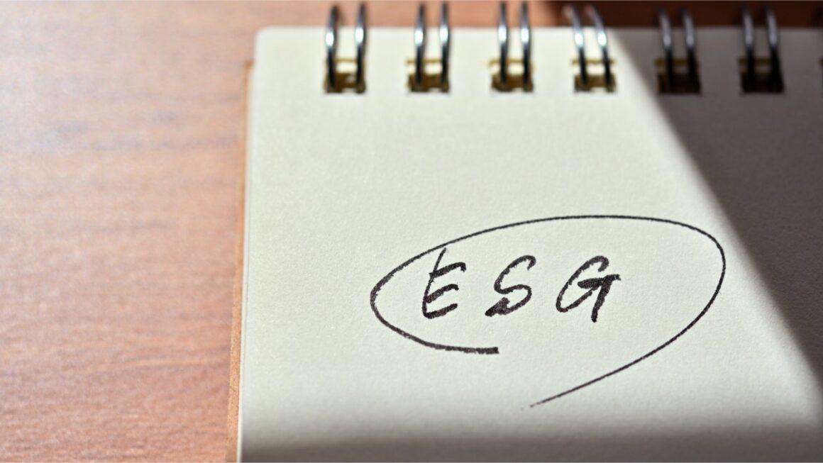 Investimento Sustentável: conheça o ESG!