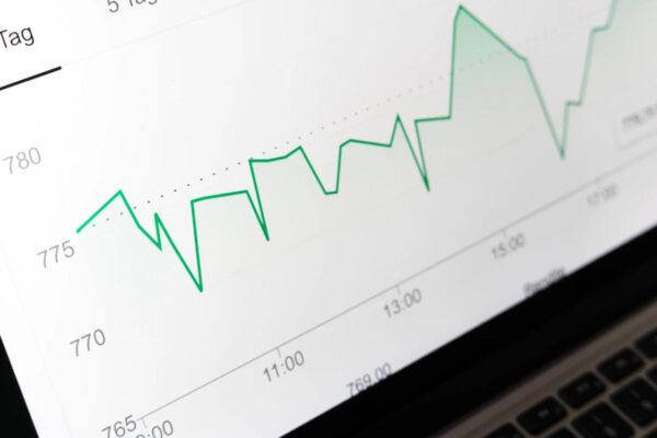 Guia do investidor de primeira viagem: confira o processo para começar a investir!